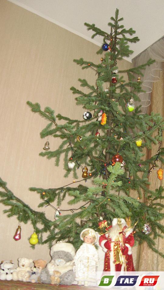Почему мы украшаем елку на новый год