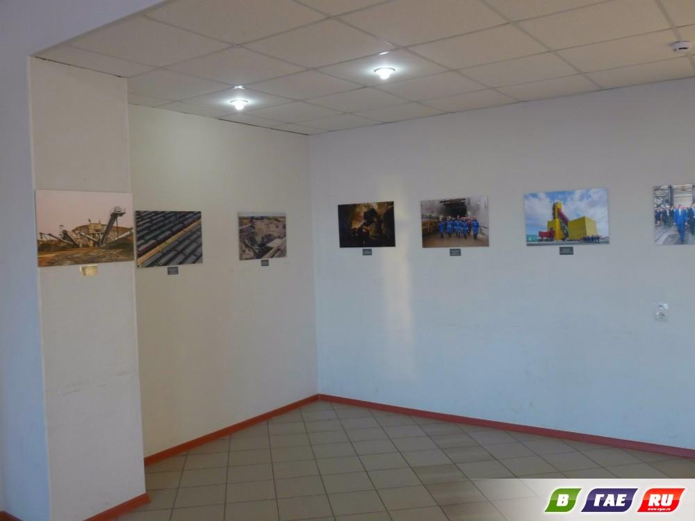 Выставка - для гайчан,  другая - для москвичей (3+)