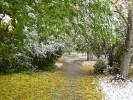 С первым снегом, гайчане!