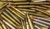 Гайчанин хранил в гараже боеприпасы