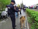 Гайчан поразило такое количество полицейских