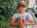 Сегодня - Яблочный Спас