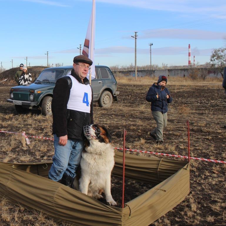 В Гае прошёл конкурс «Пёс Барбос и весёлый кросс»