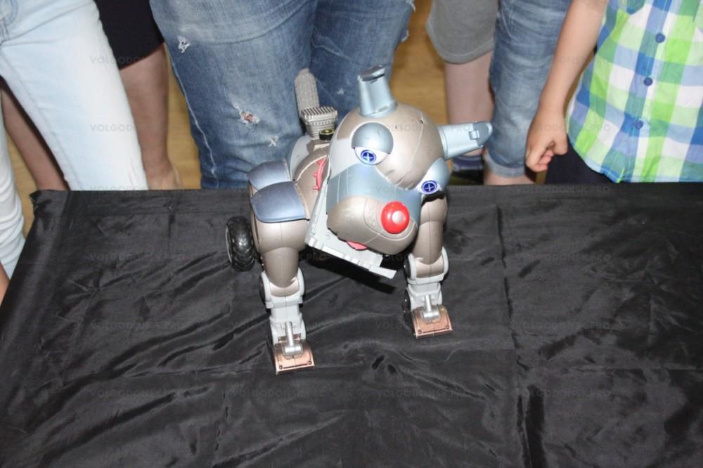 В Гае состоится выставка роботов-андроидов (0+)