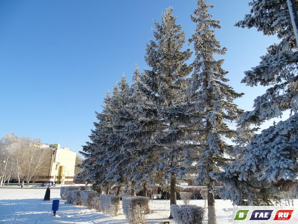 Зима преобразила Гай. Фото
