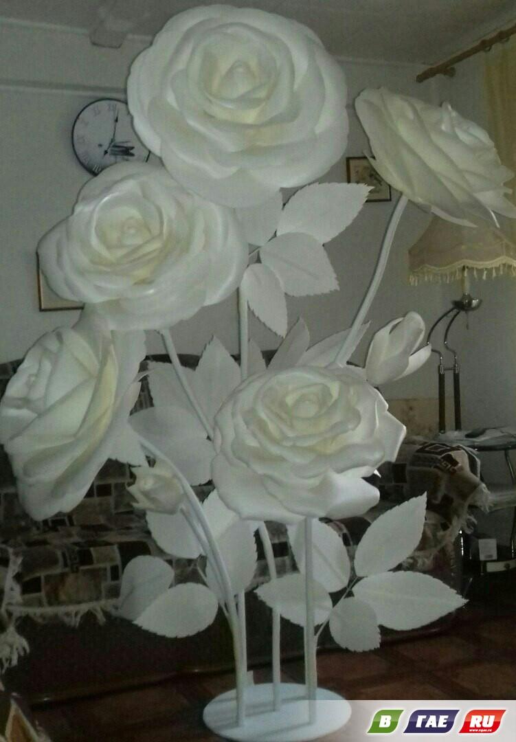 В Гае «выросли» гигантские цветы!