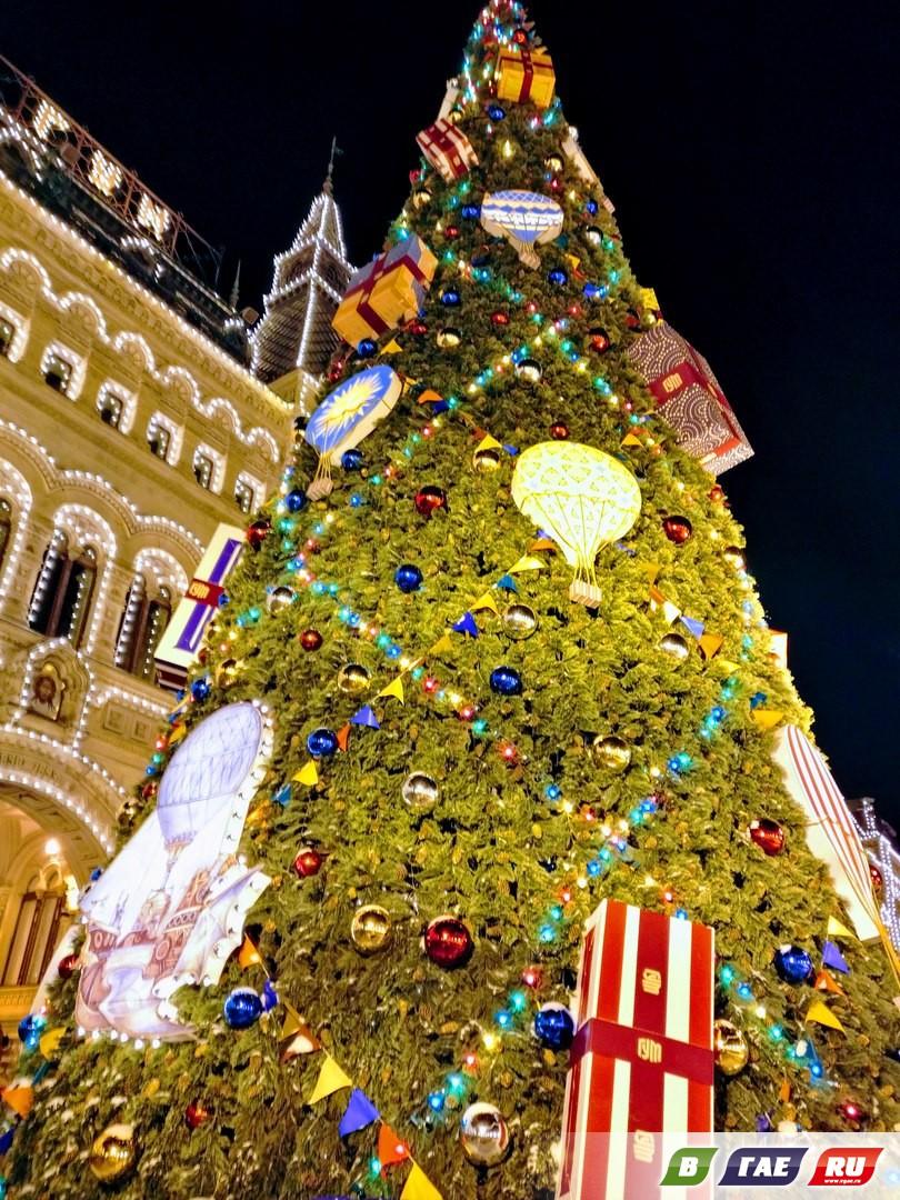Московские елки глазами гайчанки
