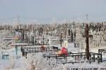 На кладбище приторговывают местами «впрок»