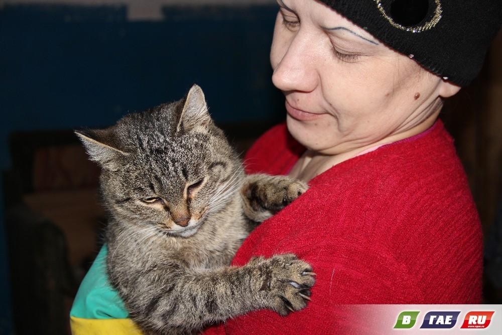 Дрогнет сердце при виде кошек - звоните!